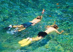 Snorkelling - Water Sport