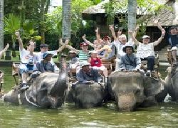 ELEPHANT SAFARI PARK TOUR - Elephant Safari Ride