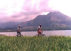 CYCLING&ELEPHANTSAFARIRIDE