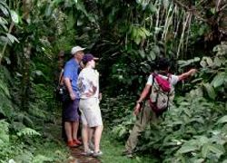 Triple Trekking - Jungle, Village, Rice Paddy.  - Treking & Mountain Climb